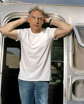 Mark_Harmon_Airstream