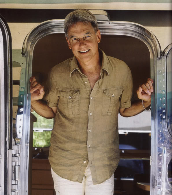 Mark_Harmon_Airstream3